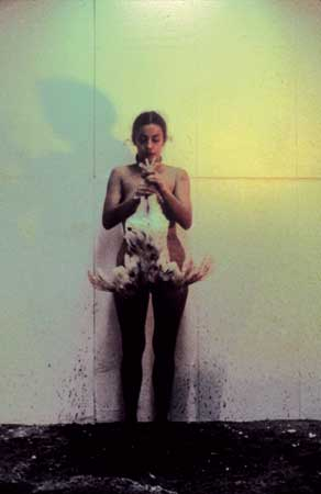 ArtNexus - News  Ana Mendieta Chicken Piece